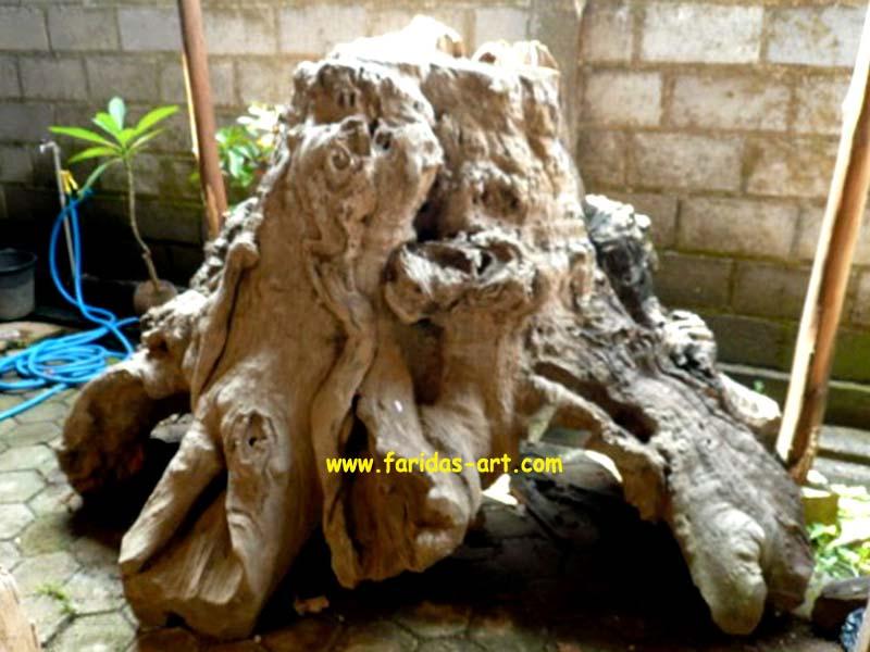 Akar Jati Gembol & Erosi - Model B.2